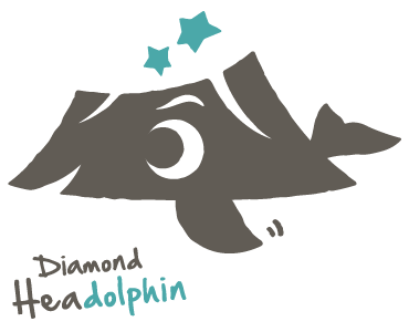 diamondheadolphin