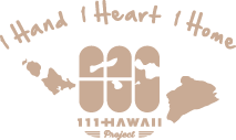 111-Hawaii Project Logo