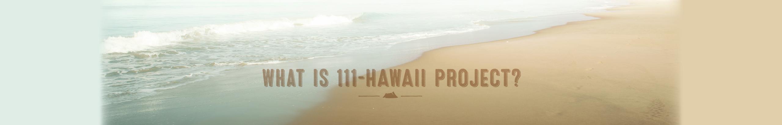 111-ハワイ プロジェクトとは? ハワイ土産のブランド化