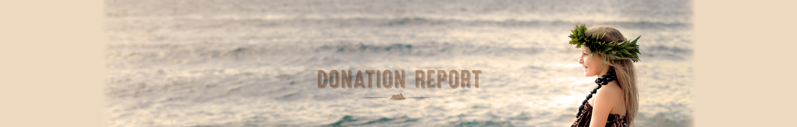 Contributing to Hawaii by donating to non-profit organizations