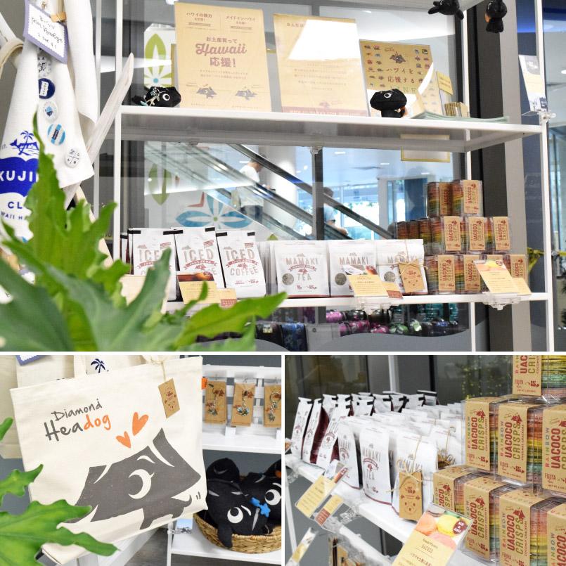 111-Hawaii Merchandise Shelf